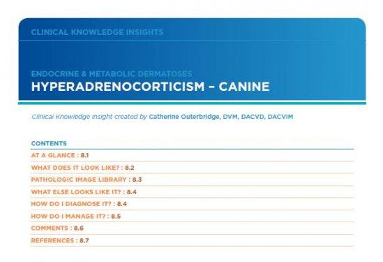 Hyperadrenocorticism Canine
