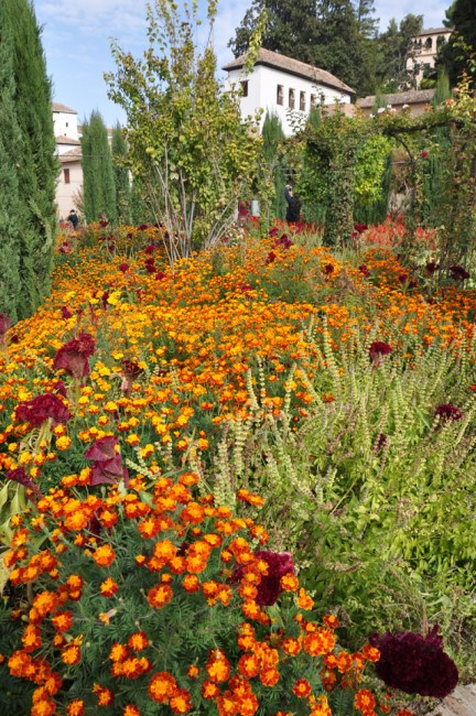 Generalife gardens, Alhambra, Granada