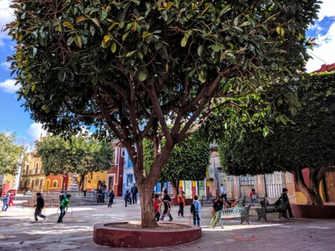 Plaza de Mexiamora, Guanajuato