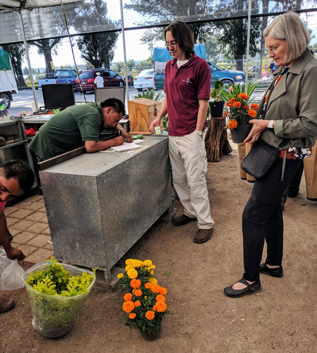 Buying flowers at Atlixco's famous greenhouses on a Livit excursion