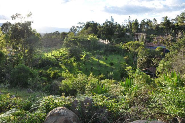 Countryside near Renacer Hostel, Villa de Leyva
