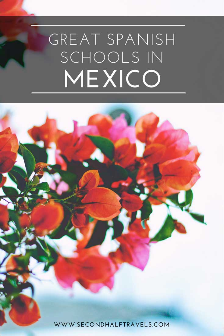 interested in learning spanish in mexico here are 12 of the best spanish schools in