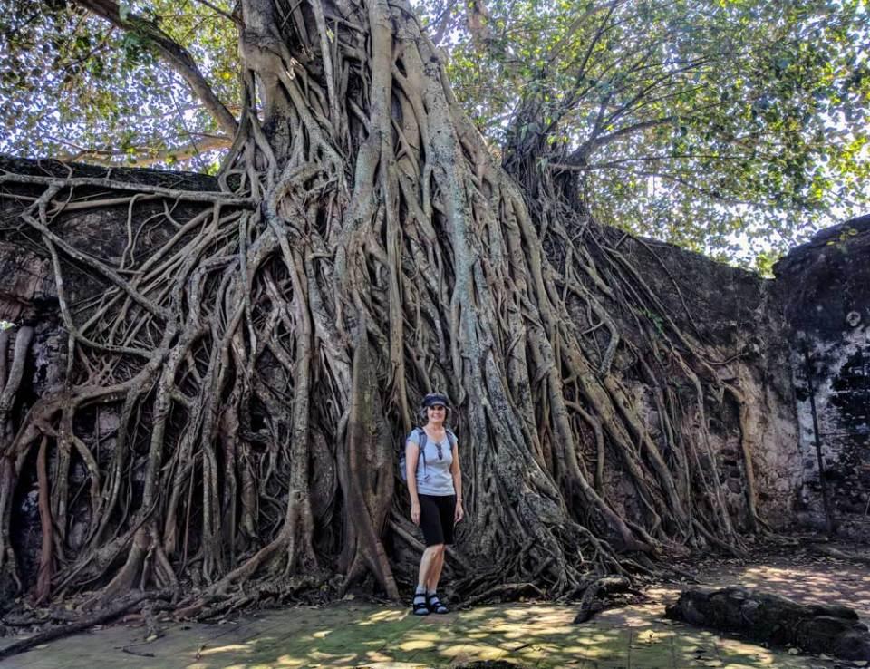 Exploring Antigua, Mexico