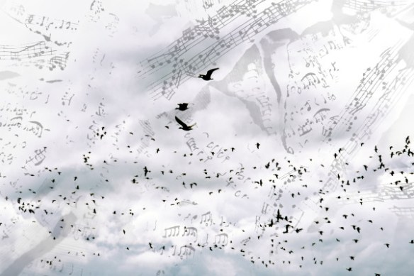 poster-bird-original-resized-600x400