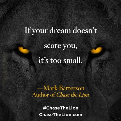 Chase the Lion, Book Review, lions