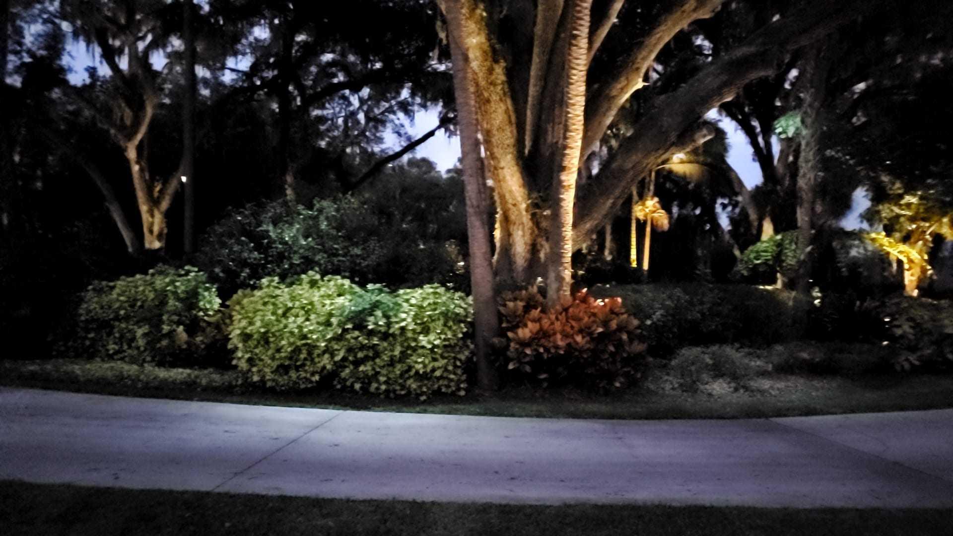 outdoor lighting repair tampa beyond