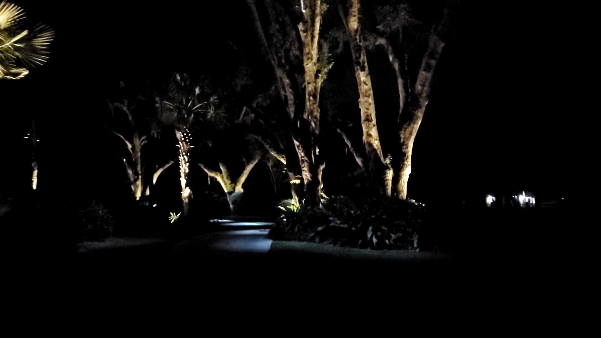 outdoor landscape lighting design in