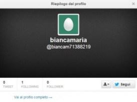Altro falso follower