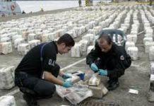 cocaina narcos colombiani calabresi