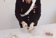 La marijuana trovata in casa di Vincenzo Ammendola a Lamezia
