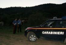 carabinieri bestiame