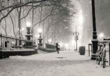 Maltempo neve parco