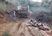 I carabinieri-forestali di Acri hanno denunciato boscaiolo