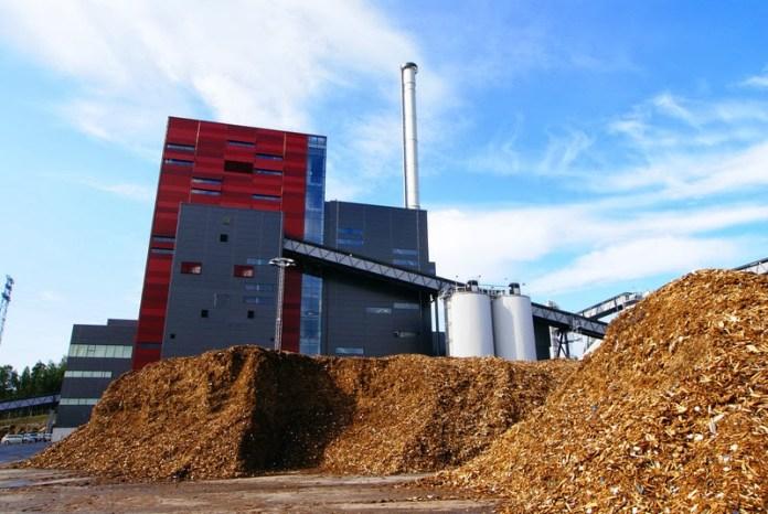biomassa legno