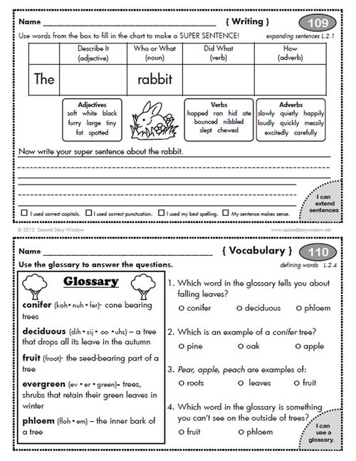 2nd Grade Common Core Homework Add-On Pack - Second Story Window