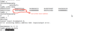 return address is overwritten with input string