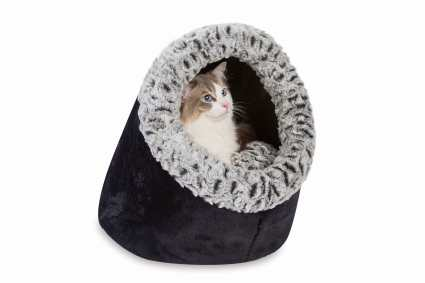 Hooded-Igloo-with-cat