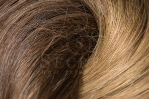 Ombre Remy Human Hair Extensions T4/10