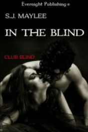 IntheBlind267x400e1415497993148
