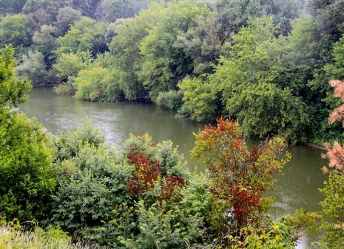 Река Тетерив