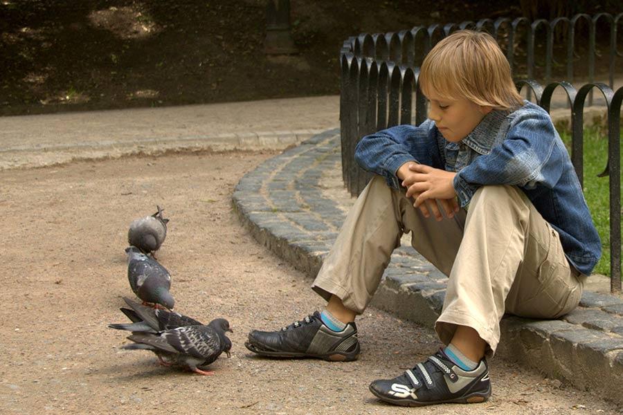 Сашулик и голуби