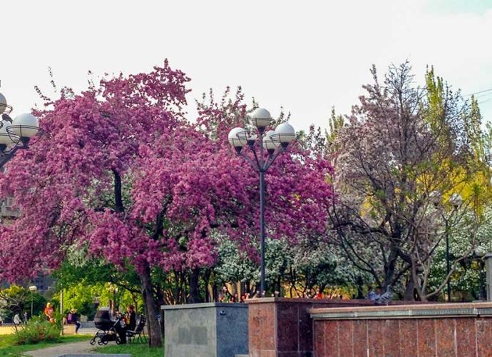 Сквер имени Марии Заньковецкой