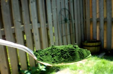 https://i1.wp.com/www.secrets-of-longevity-in-humans.com/images/health-benefits-of-chlorella-algae.jpg