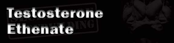 Testosterone-Ethenate