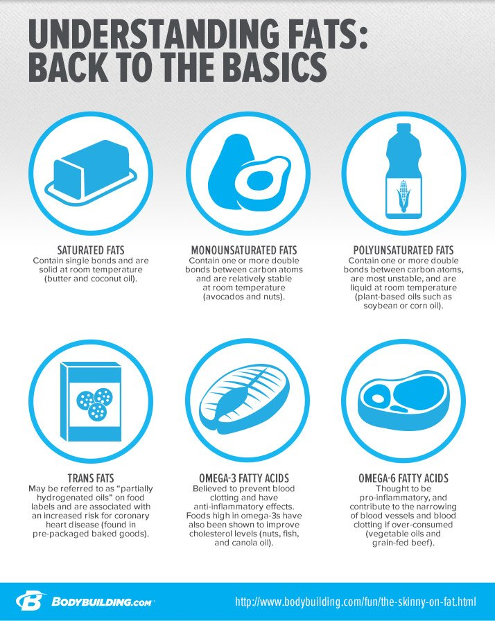 Understanding Fats: Back To Basics