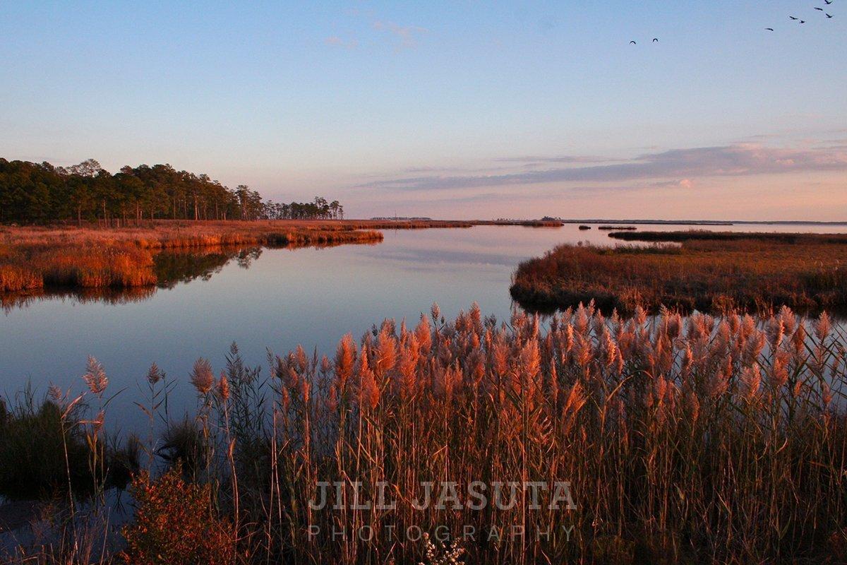 Marshland Scene at Blackwater (JJP)