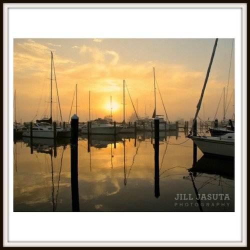 Marina in Dawn Fog Photo Print