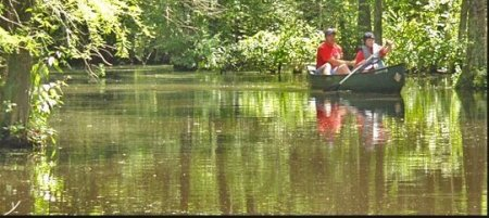 Paddling the Cypress Swamp at Trap Pond State Park