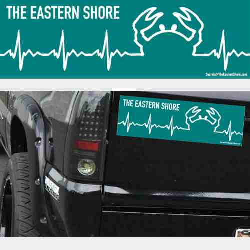 Crab EKG Decal White on Teal