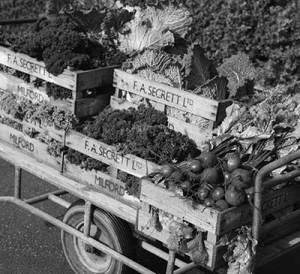 Veg-cart-BW_8x7