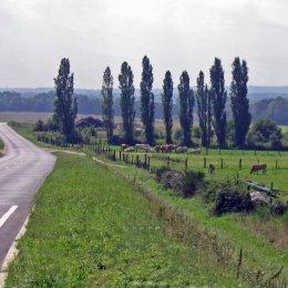 Route de Briis  à  Vaugrigneuse