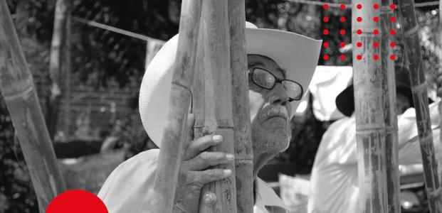 HUEYTAGREEN – Cooperativa de productores de bambú