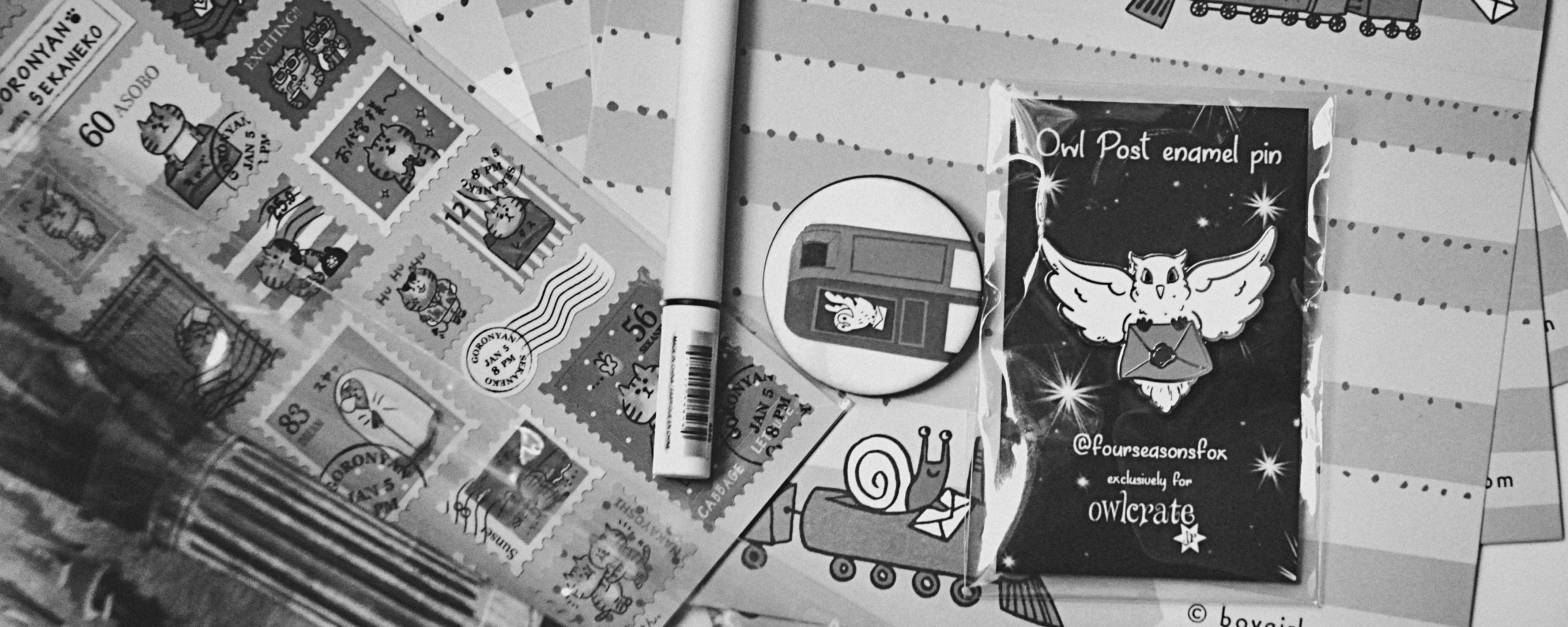 Secular Homeschooler Review: Owl Crate Jr. Experience & Promo Code