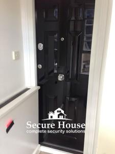 HIgh-gloss-security-door