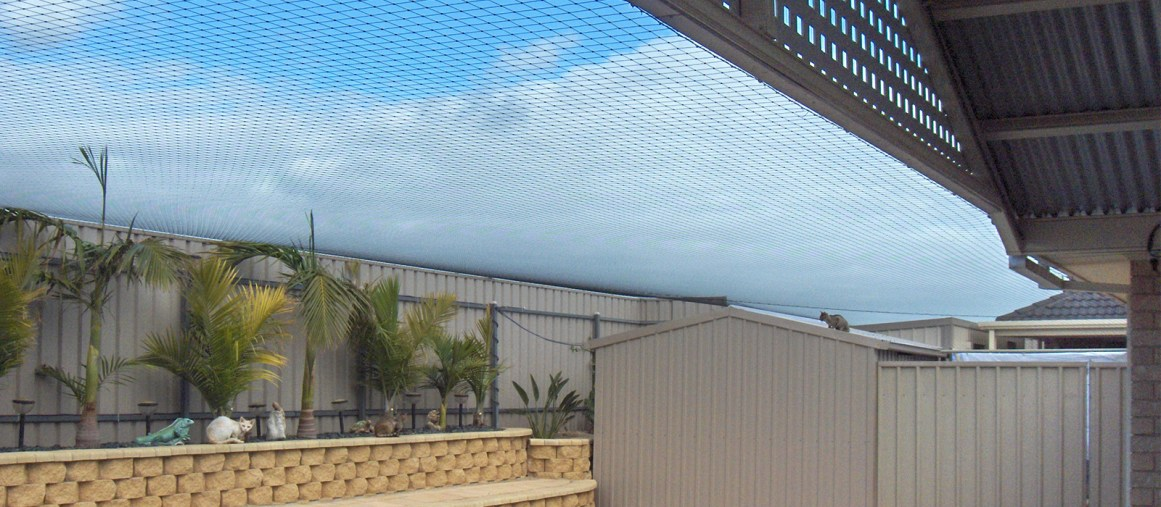 Cat Netting Amp Enclosures Adelaide Melbourne Sydney