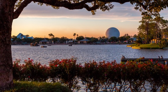 How to Enjoy Central Florida Like a Local