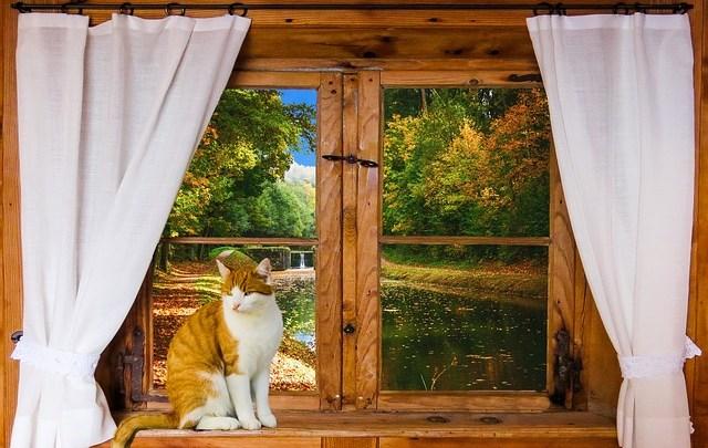 Comment sécuriser au maximum ses fenêtreset portes-fenêtres ?