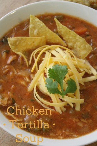 Chicken Tortilla Soup Pinterest