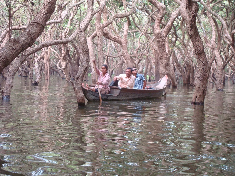 Cambodia Holidays Flooded Forest