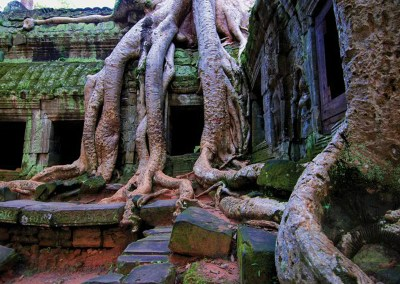 Social History & Cultural Tour to Cambodia