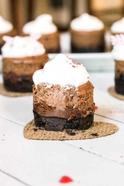 Three layer cookie crust mini chocolate nutella cheesecake and whipped cream
