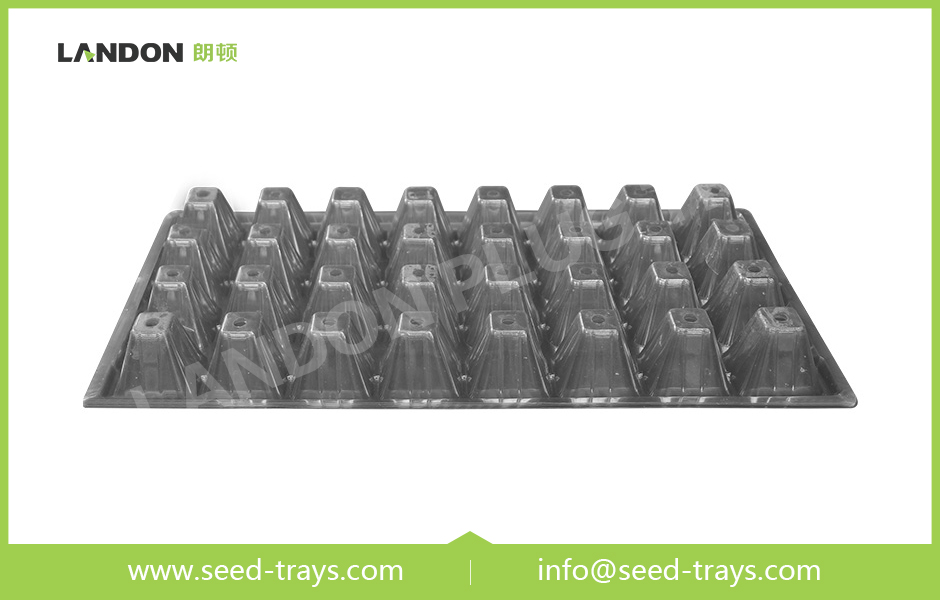 32 Cell Seedling Trays