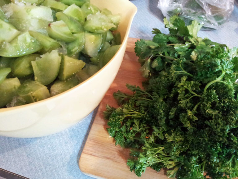 green tomatoes, cilantro, recipe