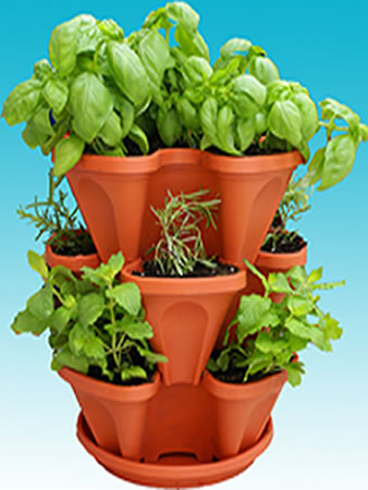 5 Great Gifts For Garden Enthusiasts Seed To Pantry