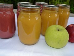 Homemade Flavored Applesauce