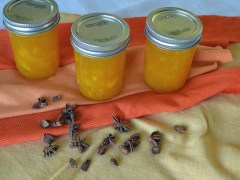 Mango Jam with Star Anise
